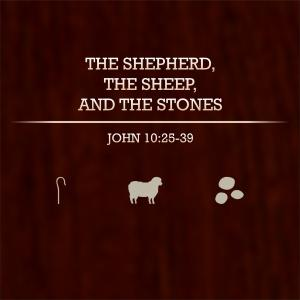 The Shepherd, the Sheep & the Stones